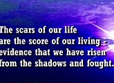 The Scars of our Life